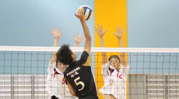 National B Div Vball: 2–0 victory for Punggol sends them to semis and knocks out Shuqun
