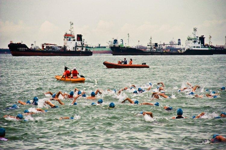 swim start tri factor triathlon