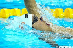 FINA Swimming World Cup 2015 Singapore