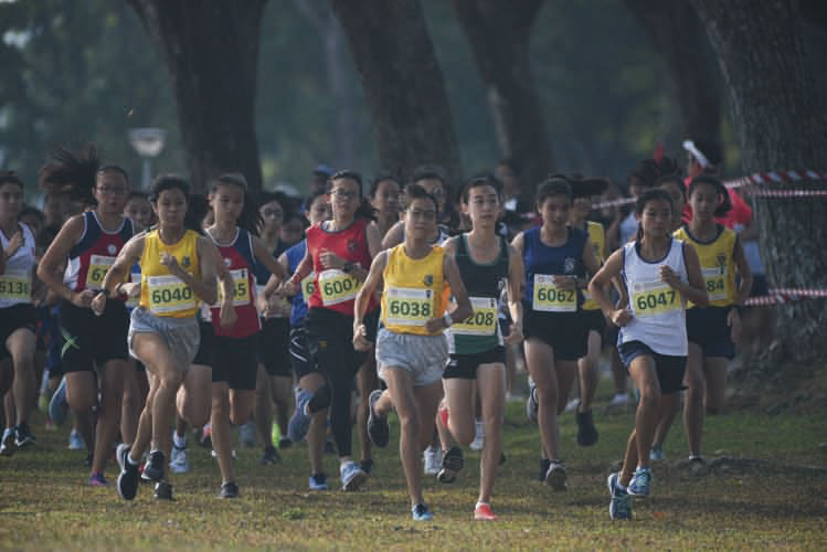 The C Division Girls starting their 2018 National Schools Cross Country race. (Photo © Stefanus Ian/Red Sports)