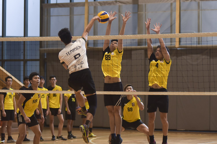Eusoff Hall defeated Temasek Hall 3-1 (24-26, 25-21, 25-17, 25-18) to claim the IHG Volleyball title. (Photo 15 © Iman Hashim/Red Sports)